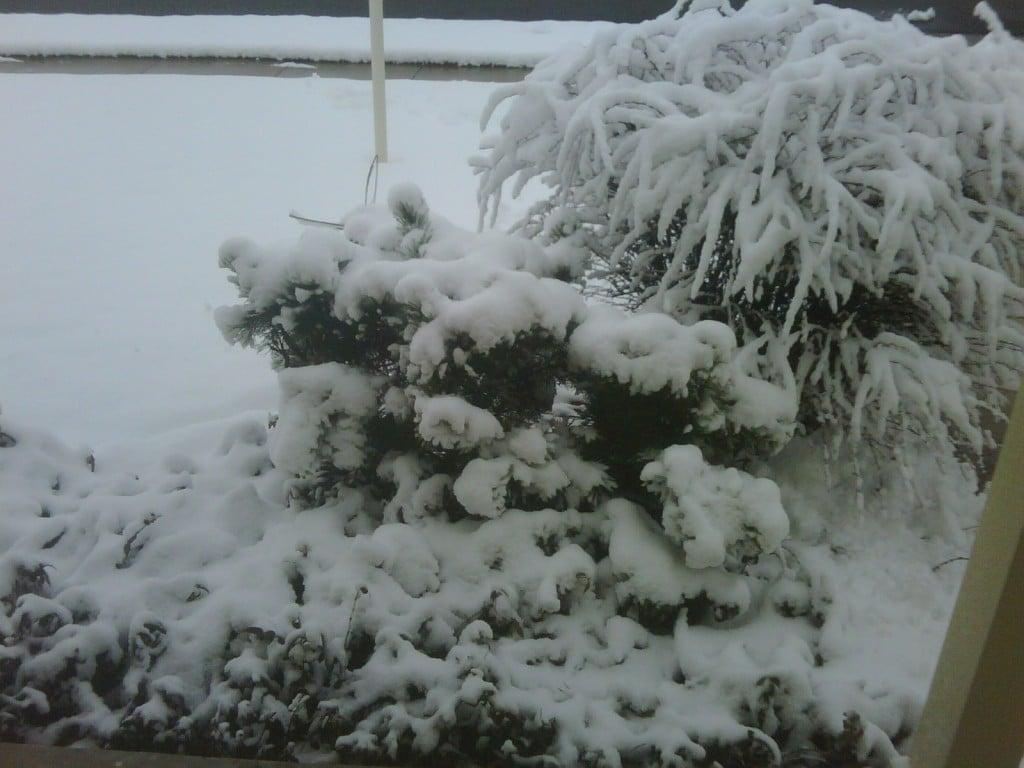 Snow in Utah