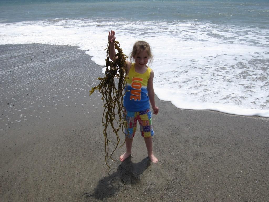 ewww seaweed!!!