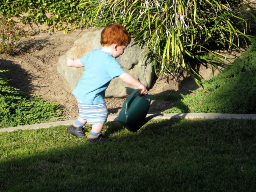 Leo watering the plants